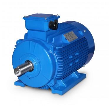 Обслуживание электродвигателя 4A160M6 15кВт
