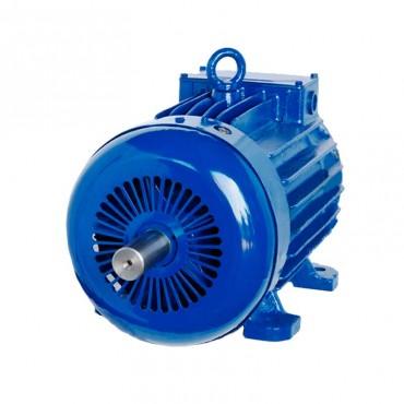 Обслуживание электродвигателя AMTKF 132М6 5 кВт